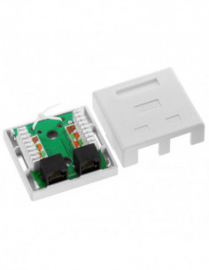 CAT5 Wall Box - Dual RJ45