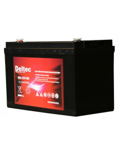 Deltec 12 100Ah AGM Battery