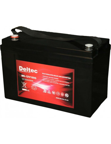 Deltec 12V 100AH Sealed GEL Battery