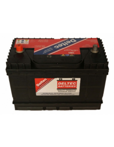 Deltec 12V 105Ah Sealed Post Lead...