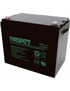 Forbatt 12V 70AH AGM Battery