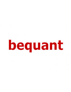 Bequant 2Gbps license -...