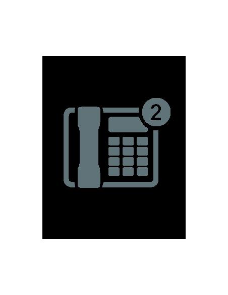 SIP Phones - 2 Line