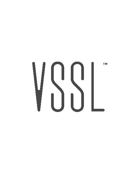 VSSL Smart Audio